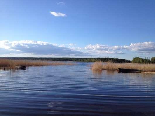 Участок 12 сот. ИЖС в д. Ольховка вблизи Суходольского озера в Санкт-Петербурге Фото 4
