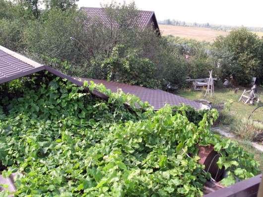 Продаются два двухэтажных кирпичных дома в г. Елец Фото 3