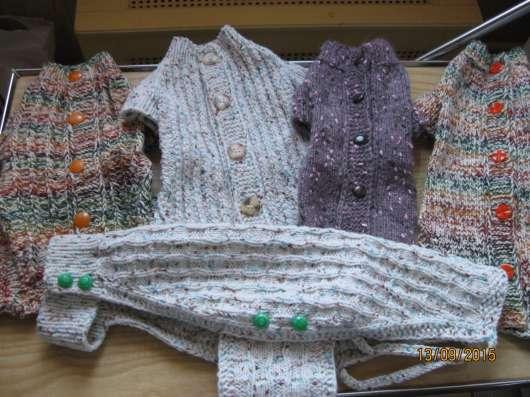 Вязанная одежда для собак в Москве Фото 1