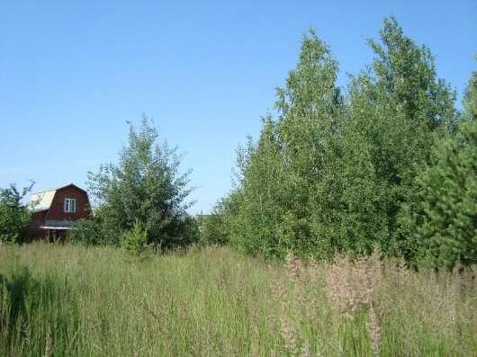 Дачный участок в Рамонском районе в Воронеже Фото 4