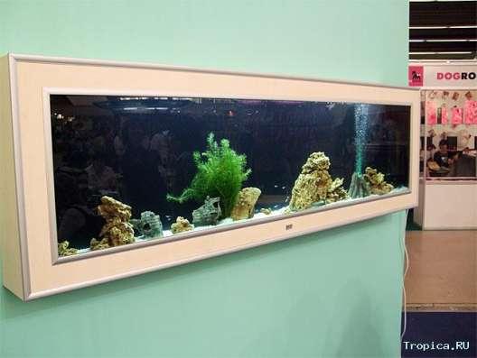 Куплю за СИМВОЛИЧЕСКУЮ цену настенный аквариум