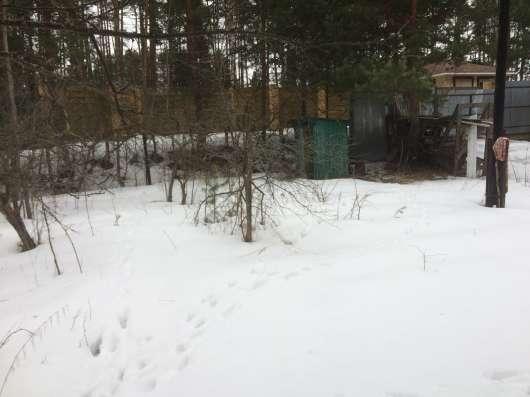 Участок 7 соток в лесу Нахабино в Красногорске Фото 5