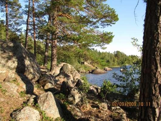 Сдам дачу на лето в Санкт-Петербурге Фото 3