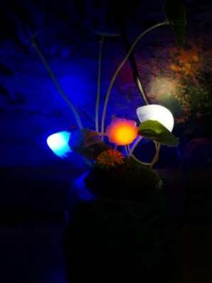 Оригинальный светильник Аватар-Грибы в Челябинске Фото 5